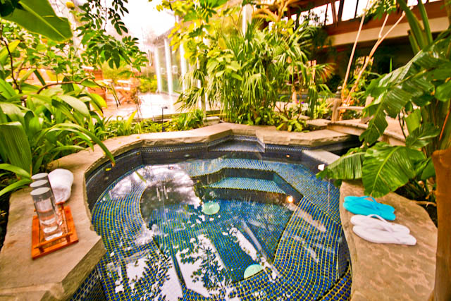 Tropical Paradise Resort House Inground Pool Hidden Grotto Bananas